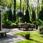 vakantiehuis huren drenthe natuur bostuin norg joy